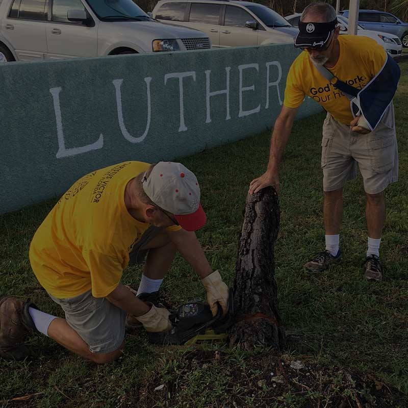 God's Work, Our Hands service project cutting down tree | Get Involved - Christus Victor Lutheran Church Naples & Bonita Springs